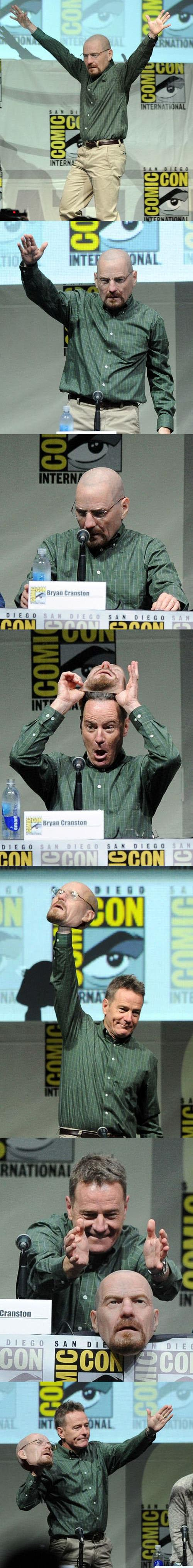 Bryan Cranston panel breaking bad
