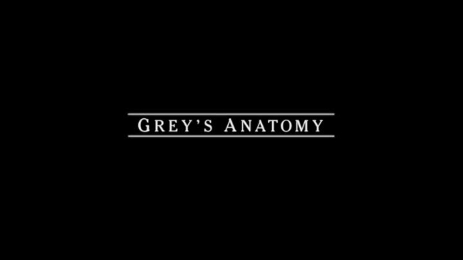 Grey's Anatomy season finale (3)