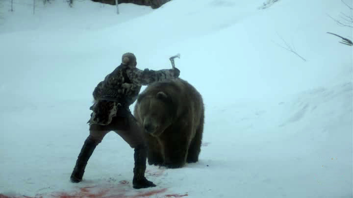 Vikings orso