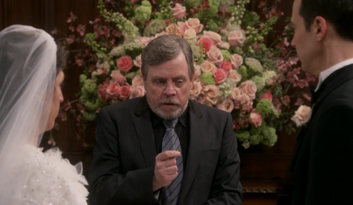 The-Big-Bang-Theory-Mark-Hamill