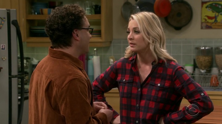 The Big Bang Theory finale (4)