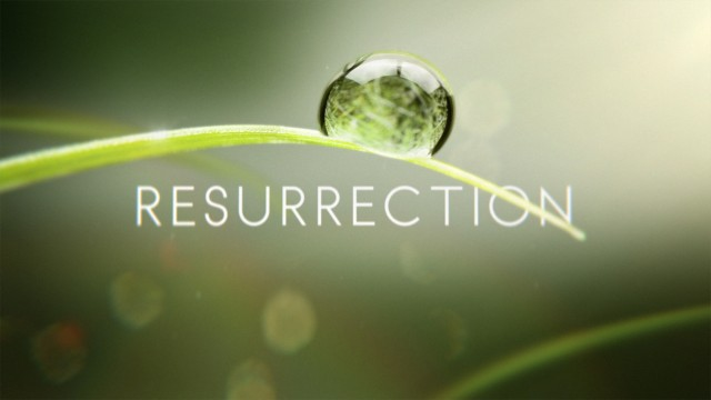 LOGO_-ONAIR_Resurrection_57778_302__140307200731