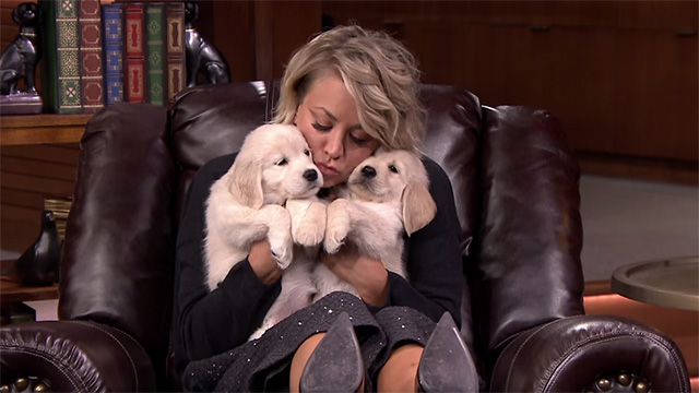 kaley Cuoco Pup Quiz