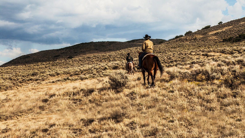 Yellowstone (8)