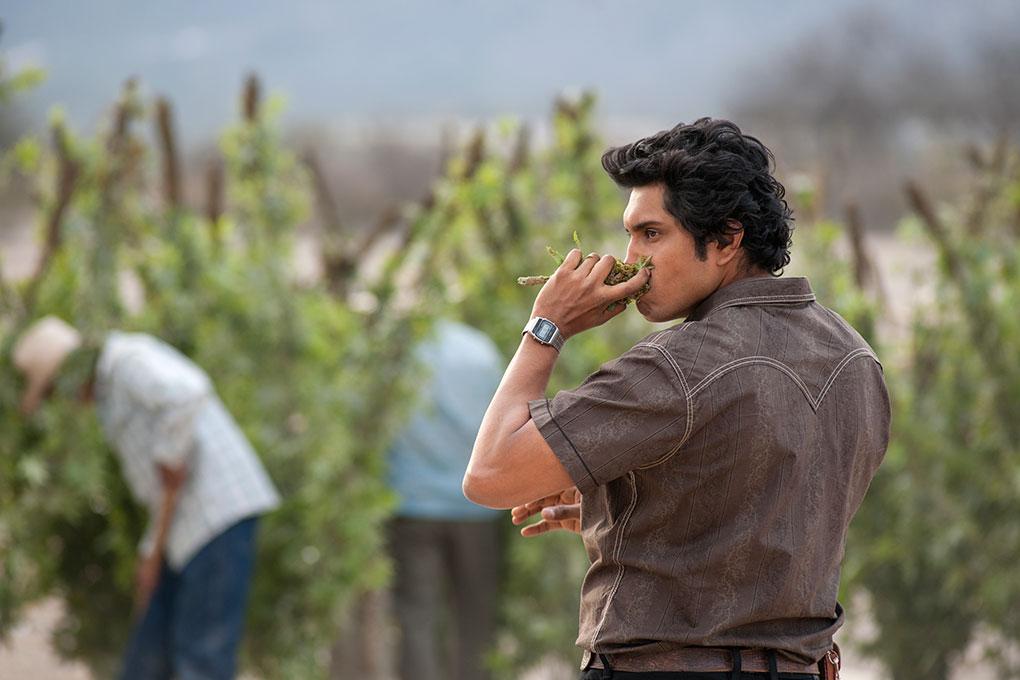 narcos-mexico-serie-tv-netflix-2